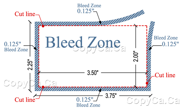 Business card bleed zone and safe zone bussiness card colourmoves